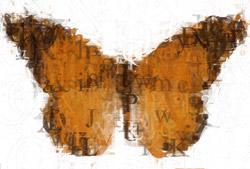 monarch_5